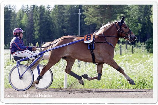 I.P. Kipinä