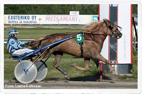 I.P. Liekki
